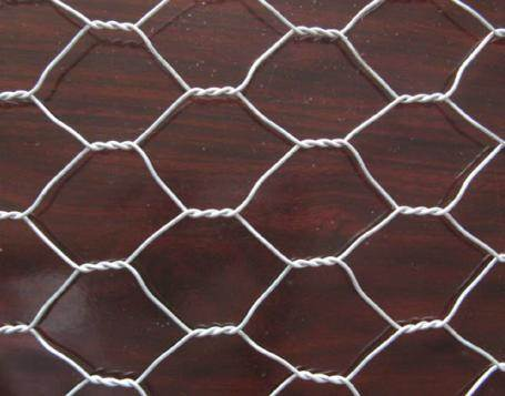 Hexagonal Chicken Mesh