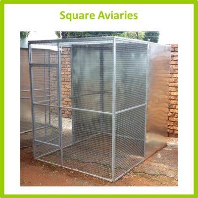 Square Aviaries